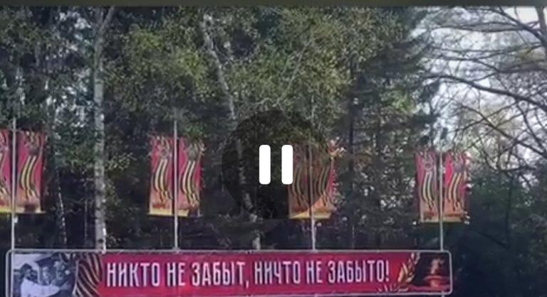 Видеопоздравление ветеранам Великой Отечественной войны от  Регионального отделения Волонтеры Победы Еврейской автономной области